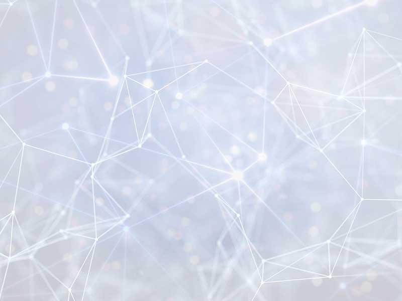 CODEX - Artikelbild